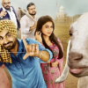 DDJ Trailer Out: With full of comedy and some fun filled with animals