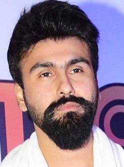 punjabi actor arya babbar