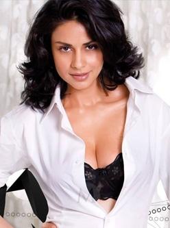 punjabi actress gul panag